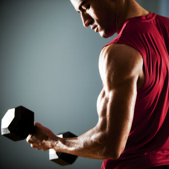 Exercise Training Programs Athlete